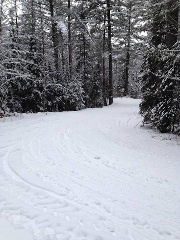 winter_trail_2_2016